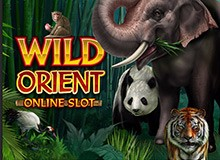 Up To 50 Free Spins on 'Wild Orient' Welcome Package