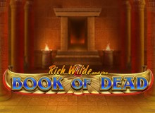 222 Free Spins on 'Book of Dead' Welcome Package