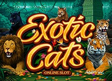 100% Up To €300 + 50 Free Spins