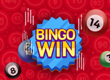 Wink Bingo Welcome Offer