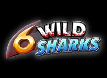 Wild Sharks 6