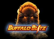 Buffalo Blitz  Copy